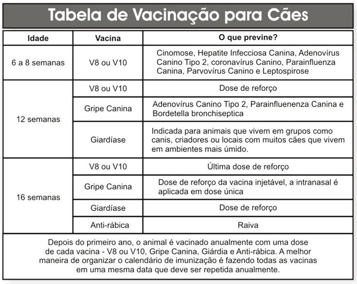 vacina-caes